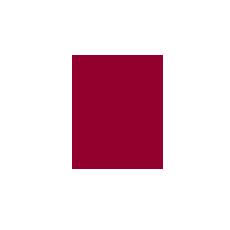 Angebot ANECON_Consulting_Glühbirne