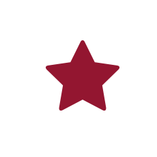 zahnrad-icon